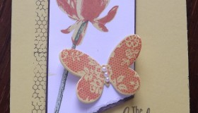 Stampin UP Lotus Blossom and ButterFly Basics from 2015 Ocassions Catalogue
